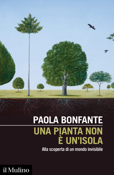 Cover No Plant Is an Island
